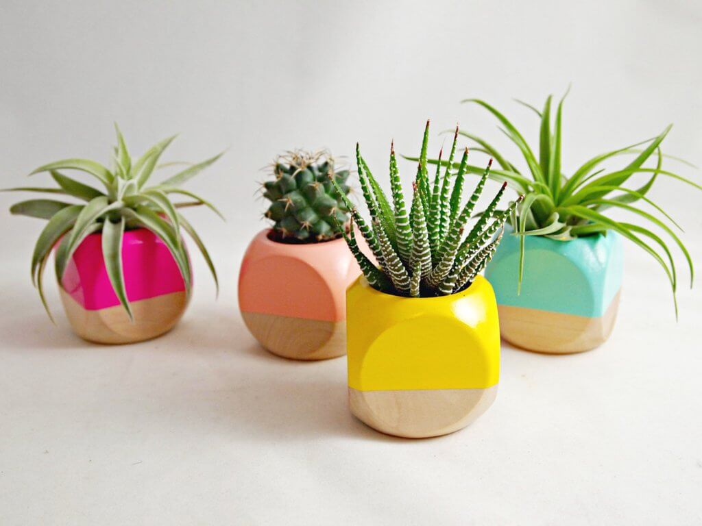 Sea & Asters Geometric Succulent Planter