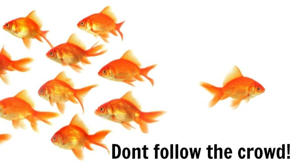 do not follow the crowds