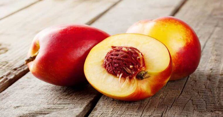 Nectarines-Summer Season Fruits