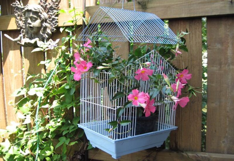 Birdcage diy flower pot