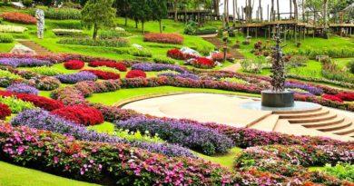 English landscape Garden