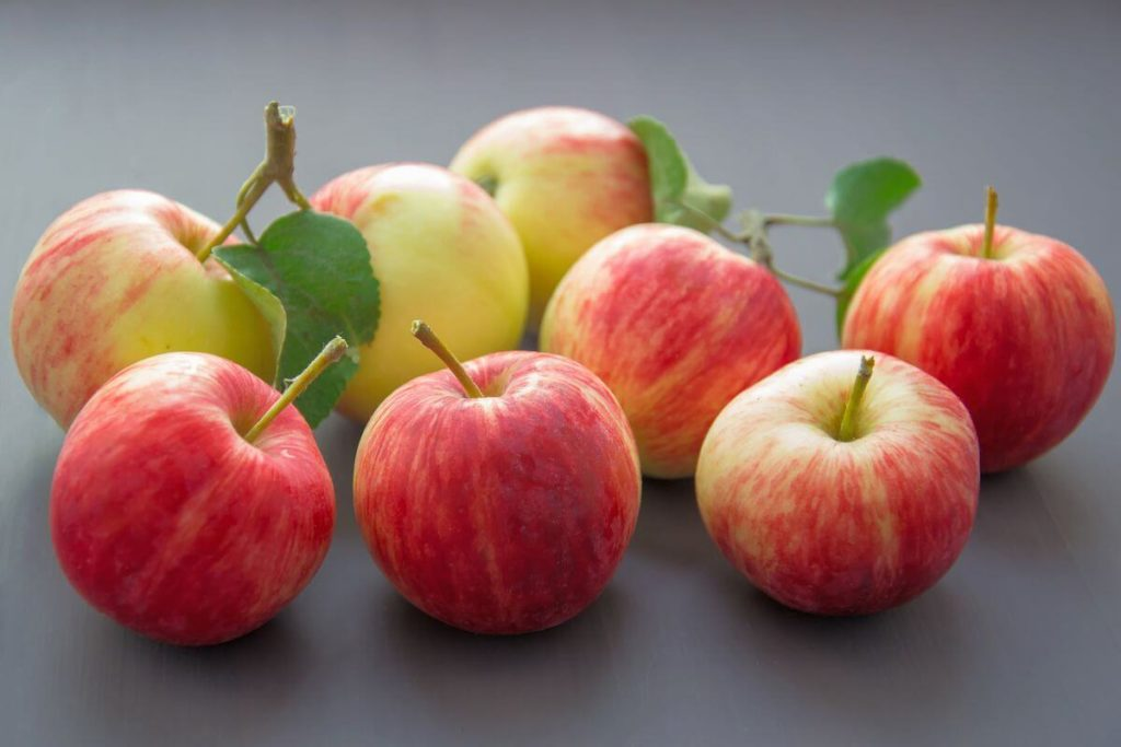 Apples-Summer Season Fruits