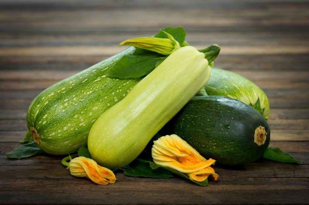 Zucchini-Summer Season Fruits