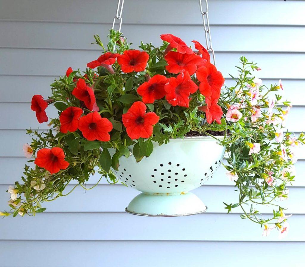 Colander diy flower pot