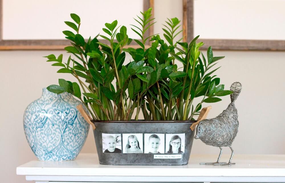DIY Photo diy flower pot
