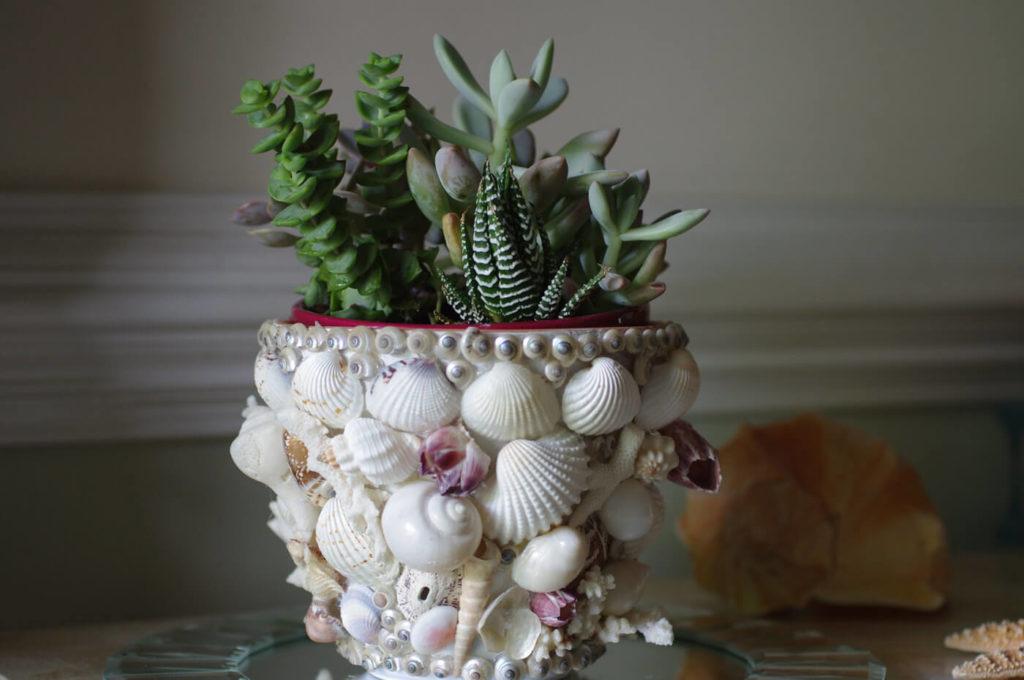 Shell Covered diy flower pot