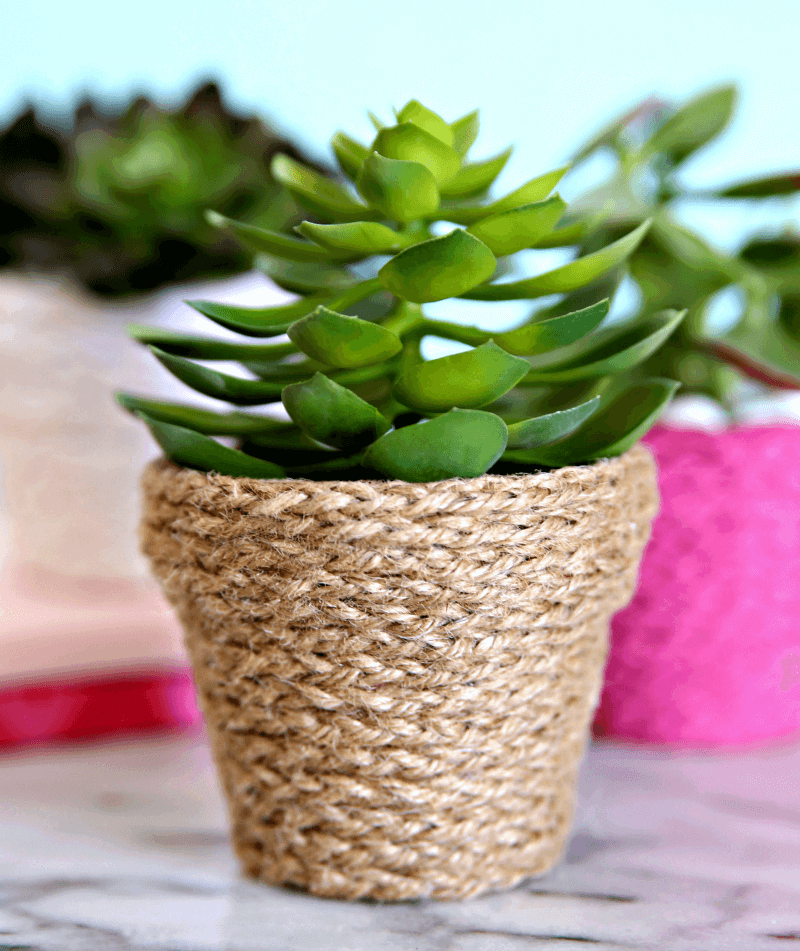 Twine Wrapped Terracotta diy flower pot