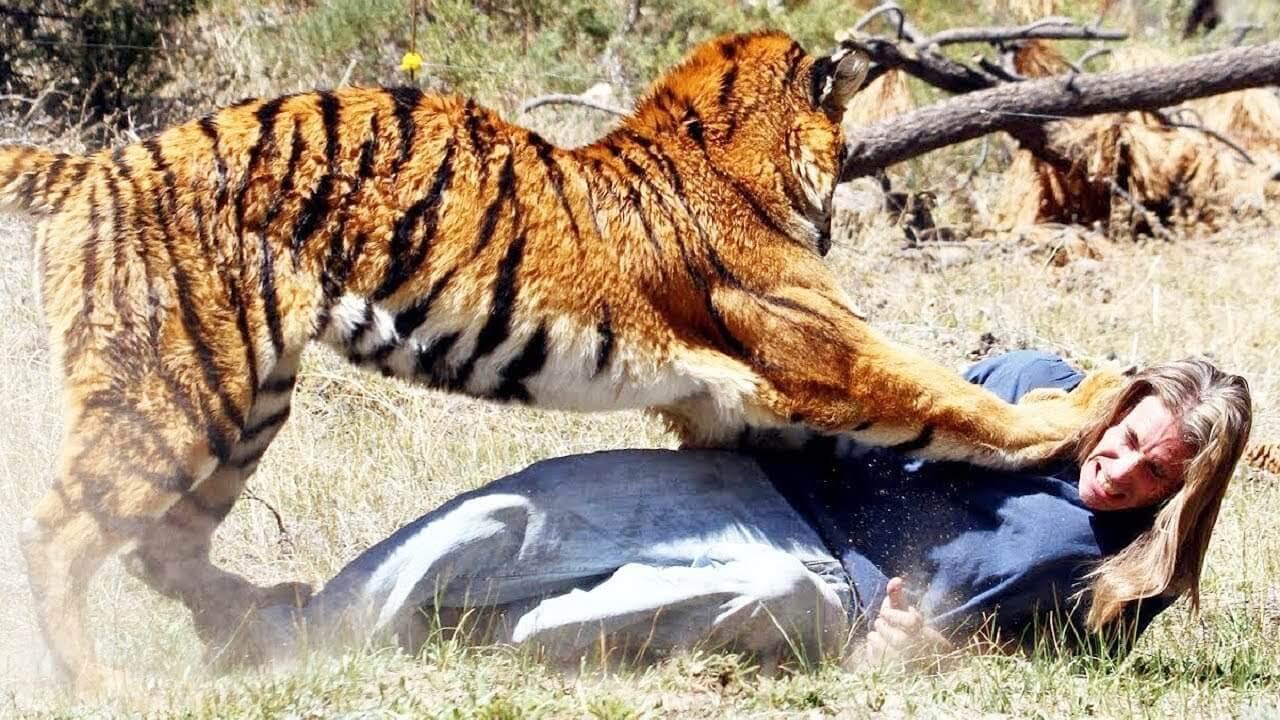 Self-defence: Basics, Situations And Tips