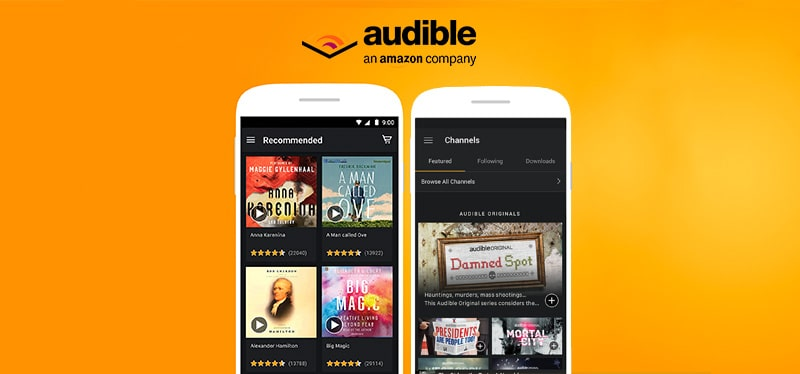 Audible kindle app