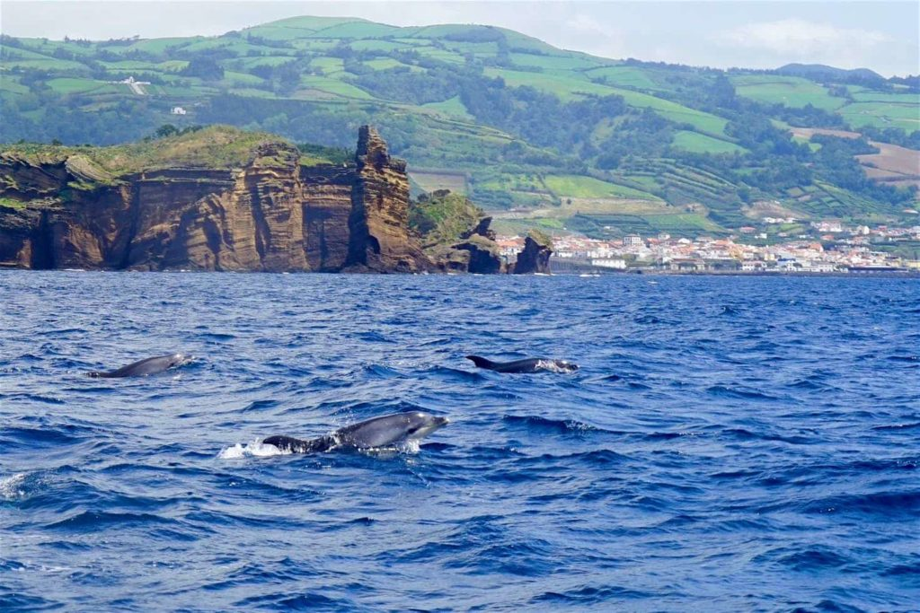 Beautiful Autonomous Region of the Azores 1jpeg
