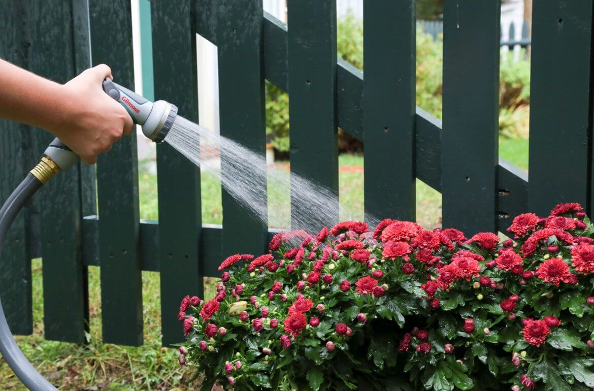 Guide-To-Garden-Watering-2