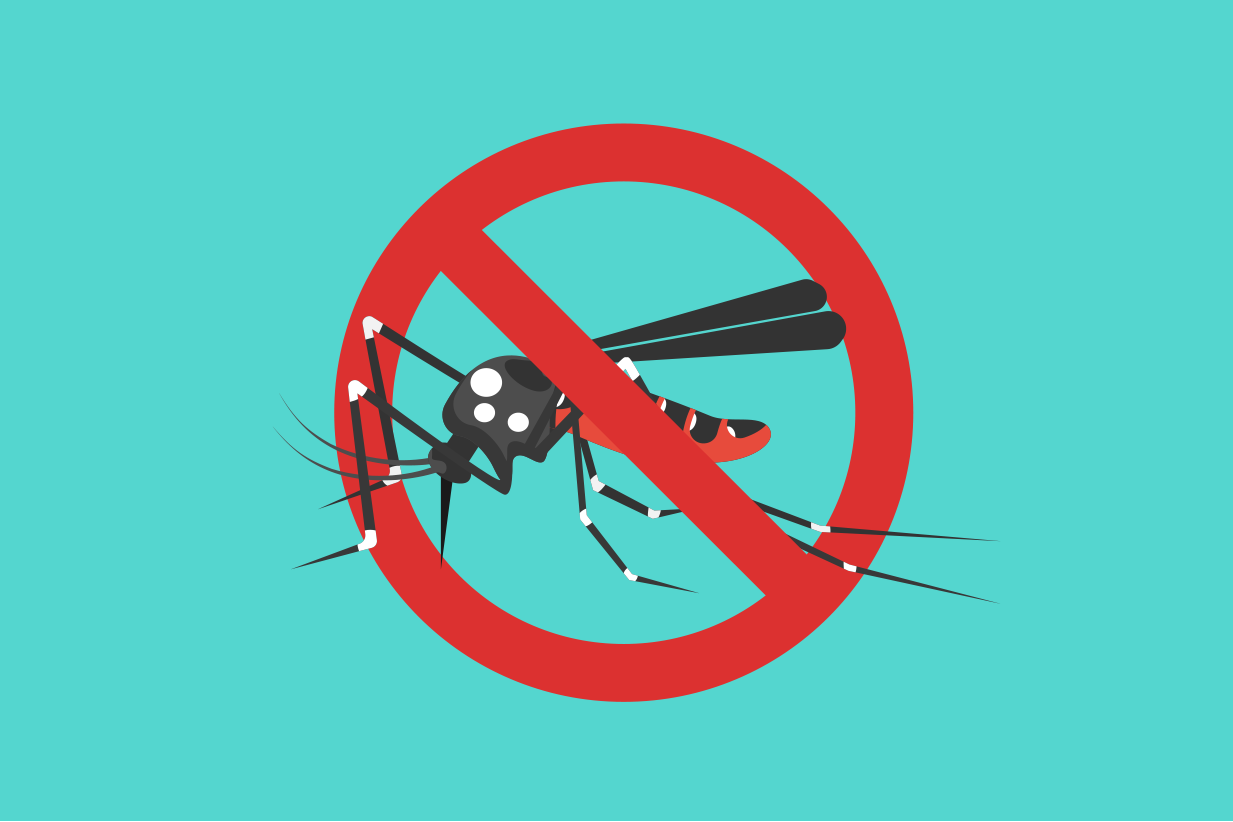 How to pervent Dengue