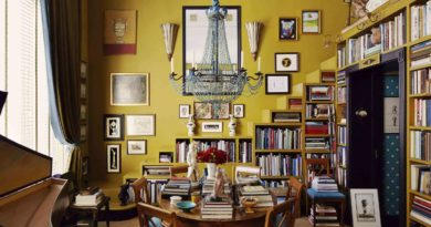 House Library 5