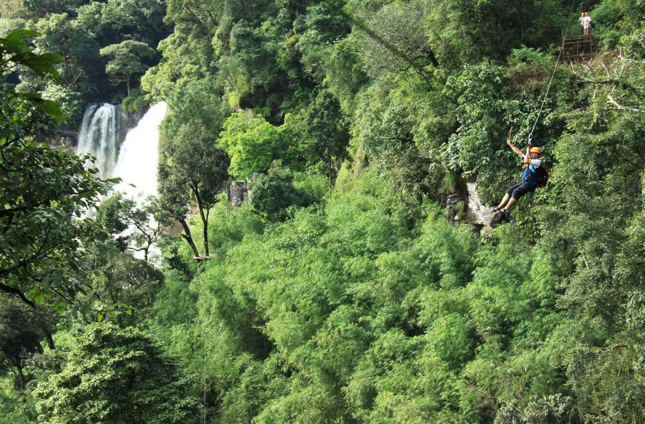 Ziplining over primal forest