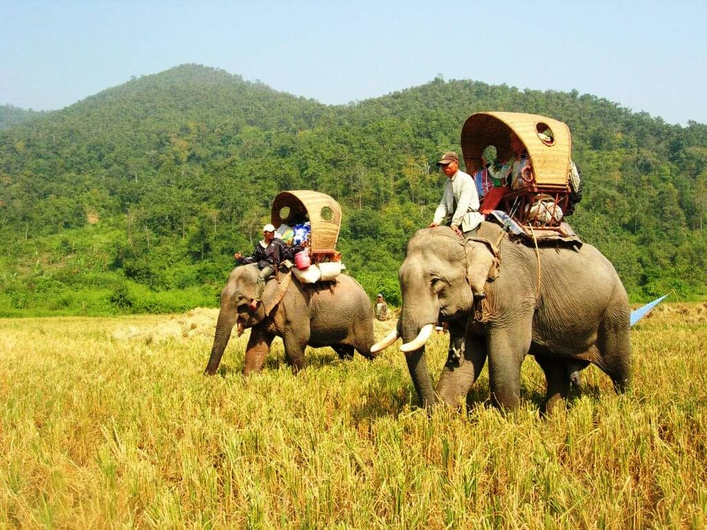 Best times to visit Laos