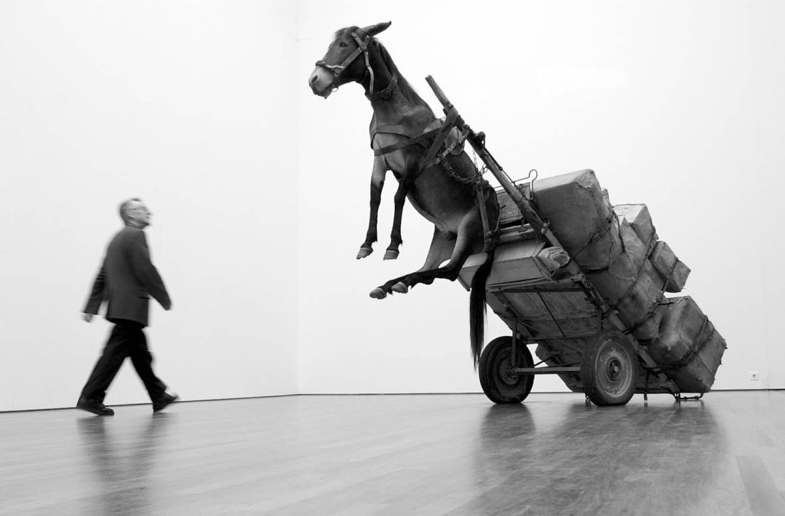 Donkey cart Tipped Up