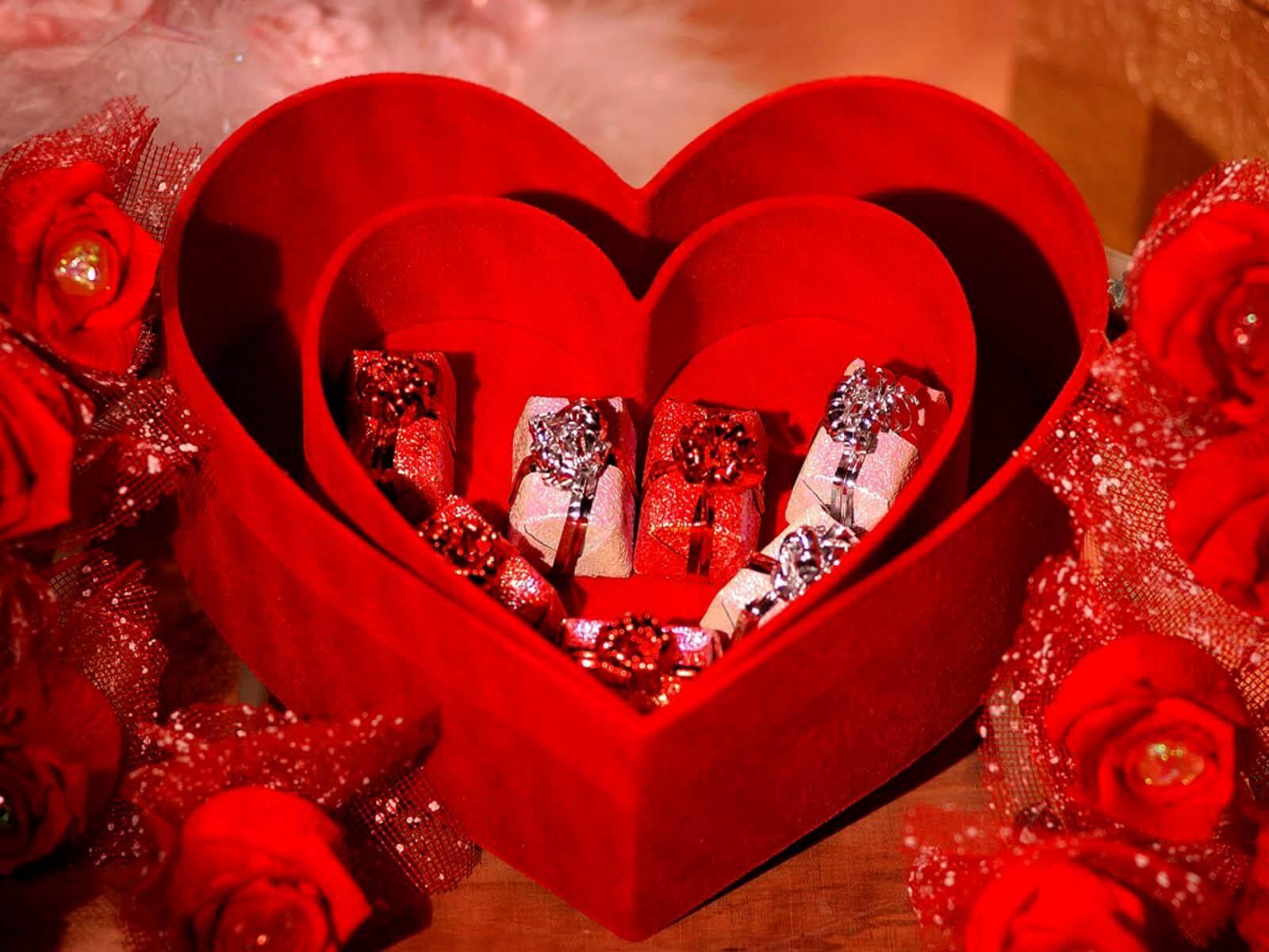 Valentine Day Gift Ideas for Girlfriend
