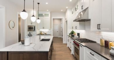 expert Design of a new kitchen