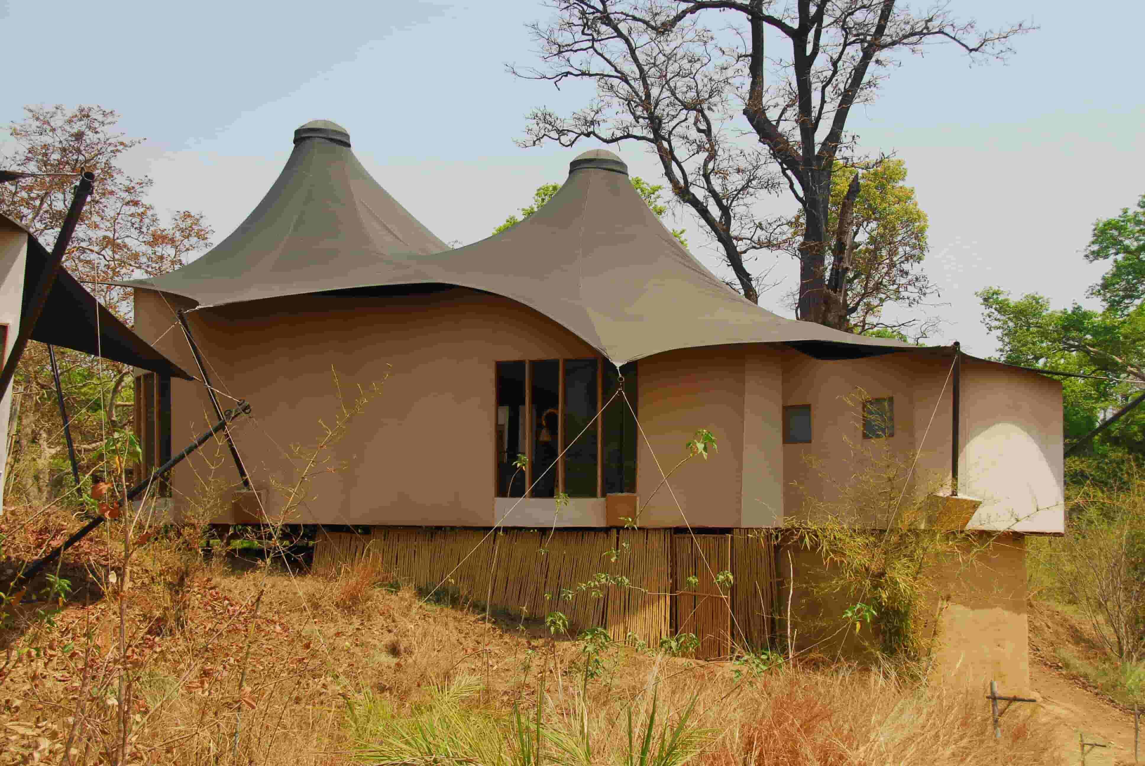 Bajaar Rola, Kanha National Park