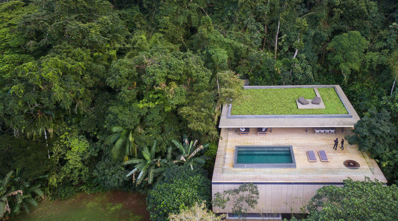 jungle house marcio kogan