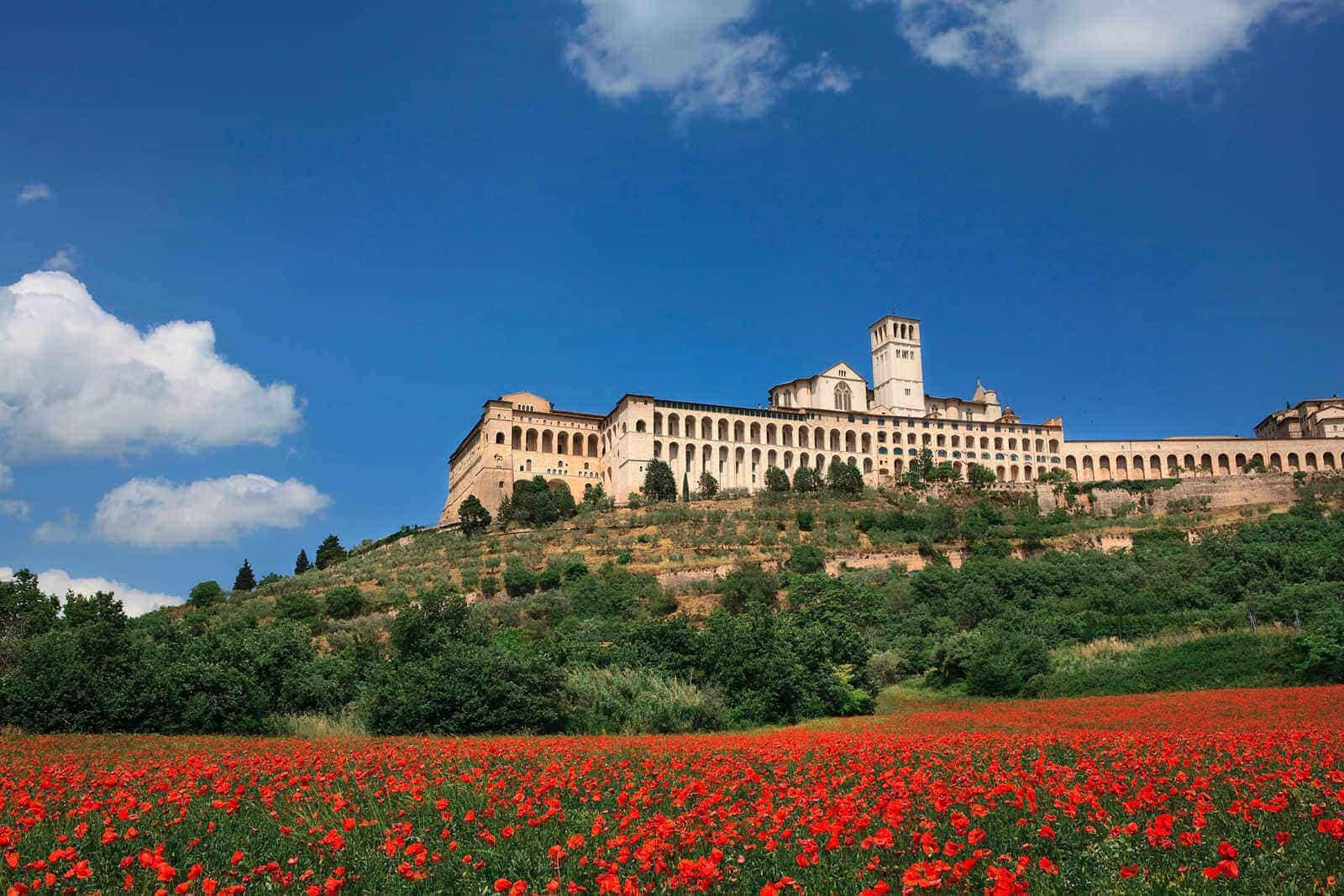 Todi Most Beautiful Places in Umbria