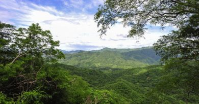 Diria National Park