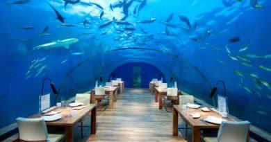 Ithaa Undersea Restaurant