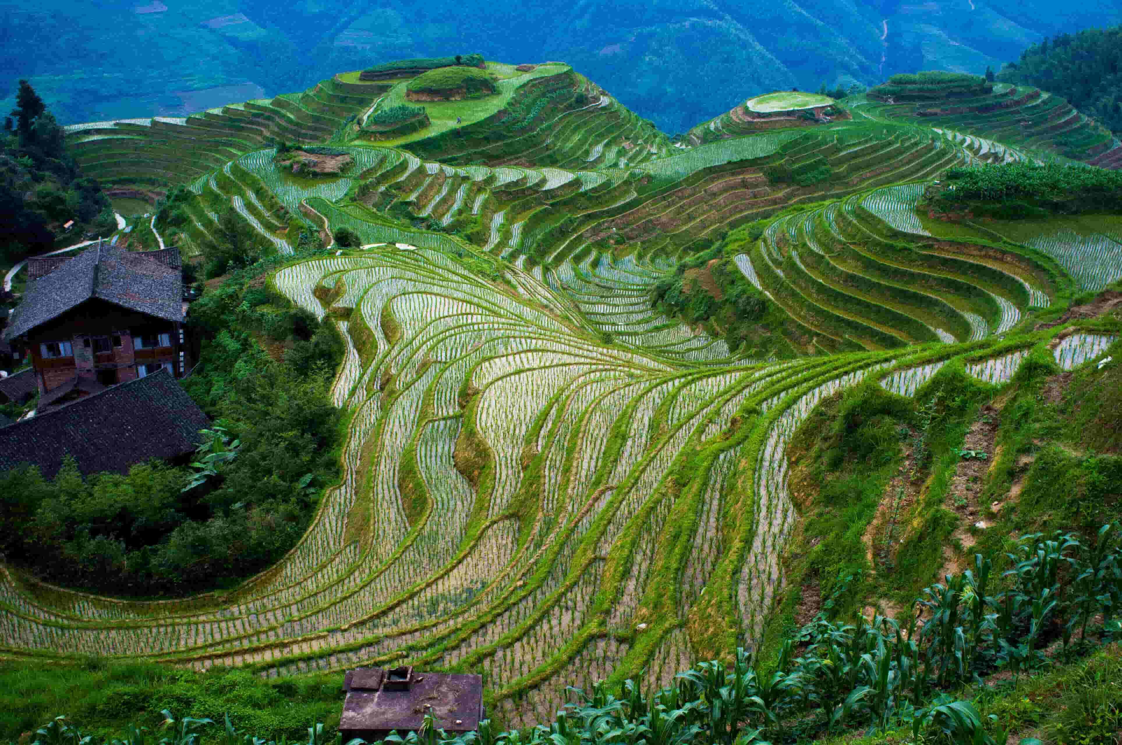 Longji near Guilin