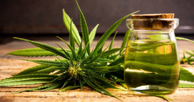 10 Things to Know About Health Benefits of Cannabis Oil