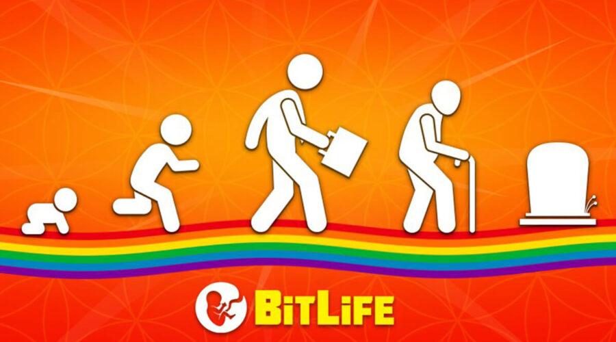 BitLife Application