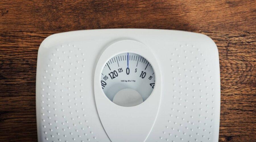Weight Watcher Scale