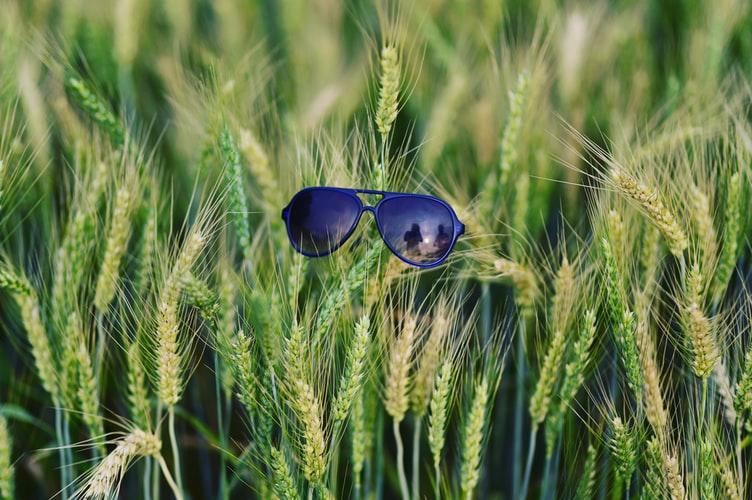 Prescription Sunglasses 5