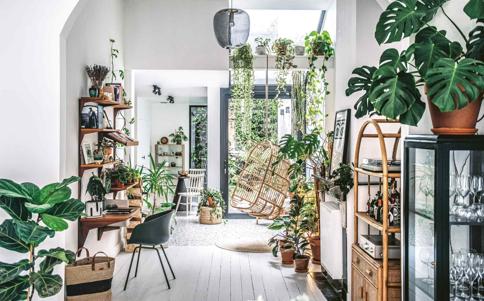 Decorating the Interior with Potted Plants