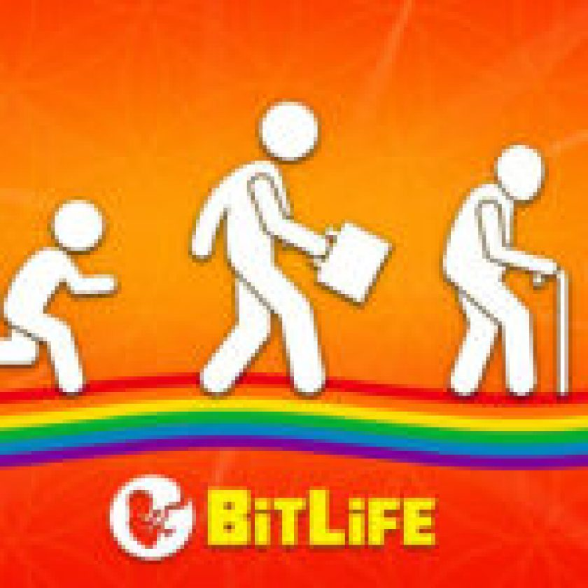 BitLife Application