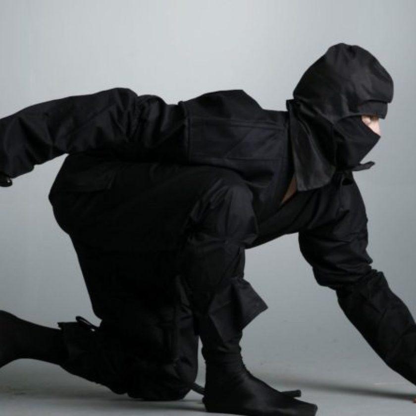 Ninjutsu Martial Arts Self Defense Techniques