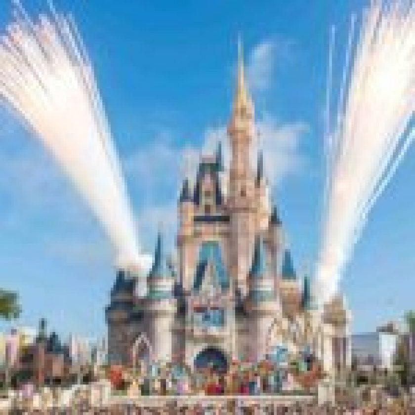 Roam Walt Disney World
