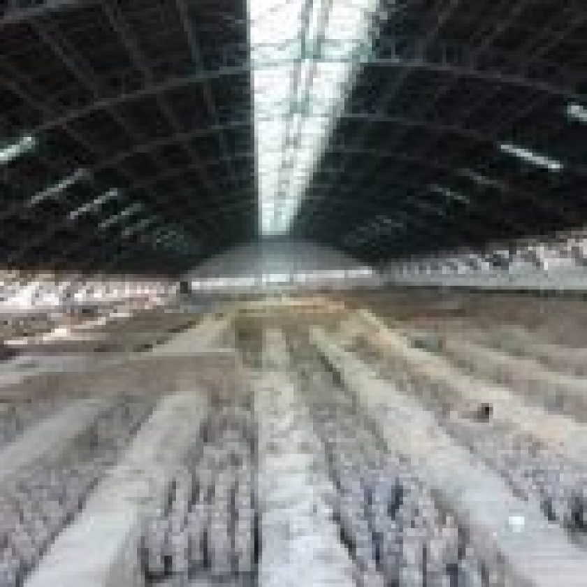 The Museum of Qin Terracotta Warriors and Horses in Xi'an, China
