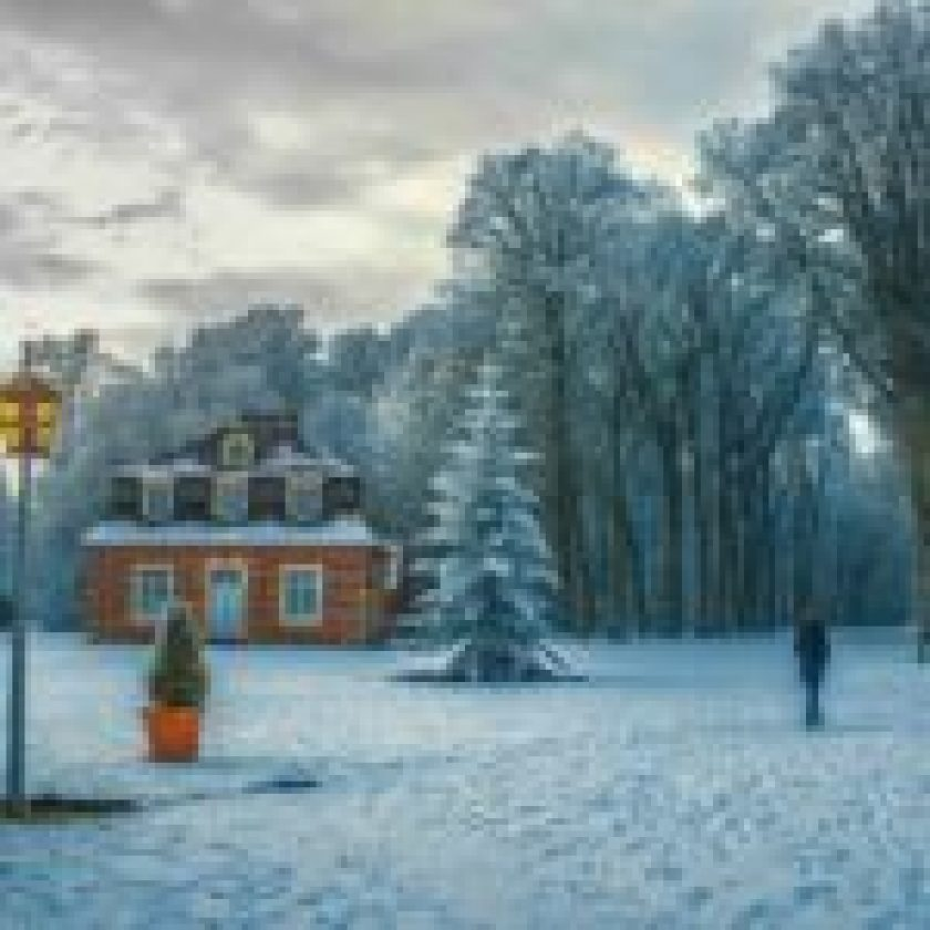 Winter Tips to Find the Best Snow Blower