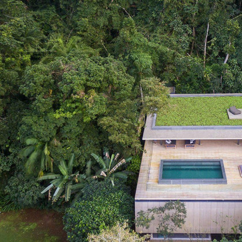 jungle house marcio kogan